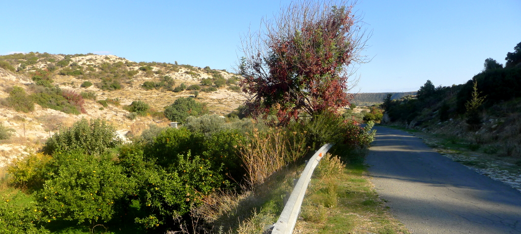 by e-bike on the old road off Pissouri